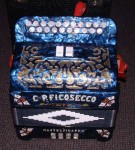 FICOSECCO ITALIAN MELODEON BUTTON ACCORDION in D/G.